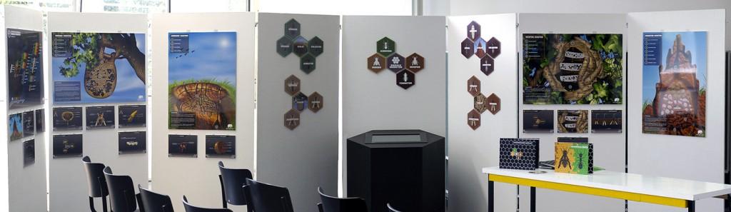 Diplom_Panorama