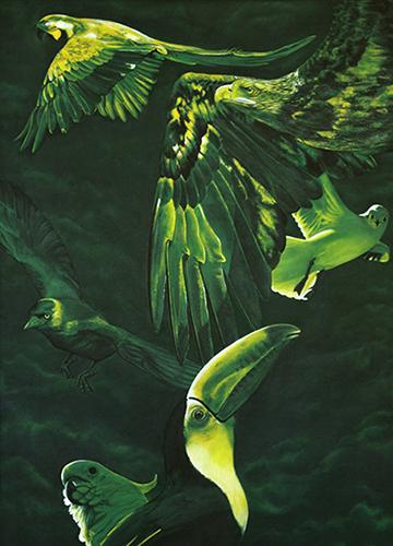 Re:Bird